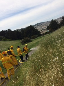 Facilities - image of wildland fire training at mclaren park