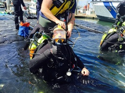 Special Operations - image of dive rescue team preparing for drill